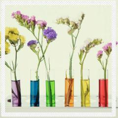 parfyumernaya-moda-kakie-aromaty-i-noty-budut-populyarny-v-2020-m-godu